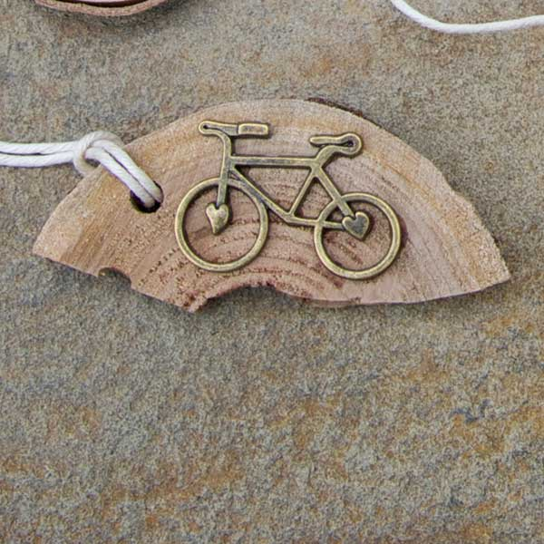 heart cogs bike